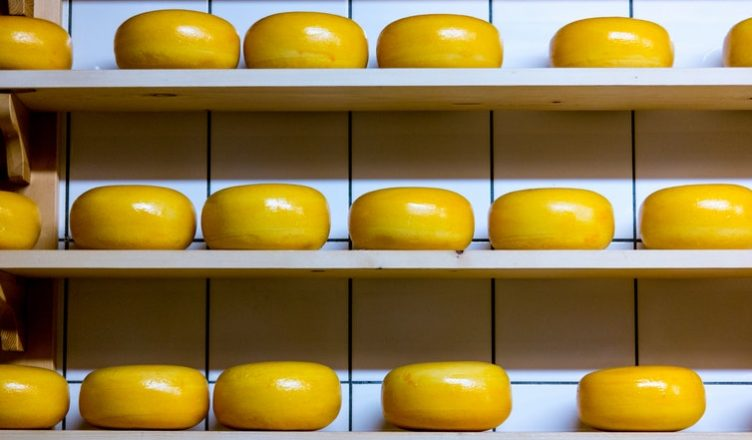 O Porquê do vicio do queijo