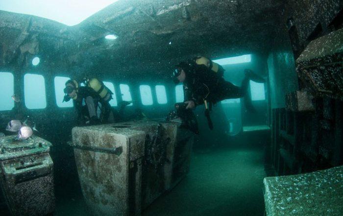 ocean revival portimao