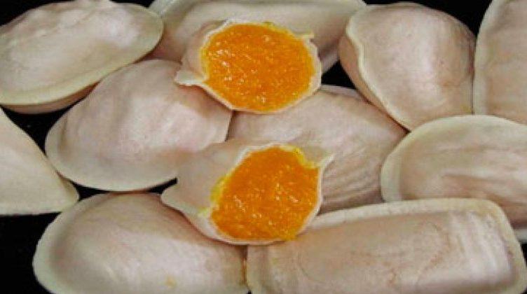 ovos moles aveiro receita