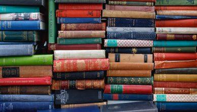 Proverbios portugueses e populares